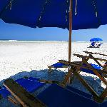 Beach chairs from Barneys Beach Rentals