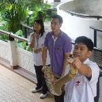 The snake show presentation