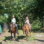 Shenida organized the beach horse tour for the girls.