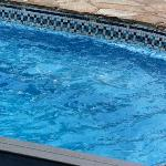 scum in the pool