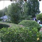 Il giardino che si vedeva dalla mia camera