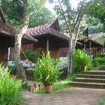 Somatheeram Ayurveda Resort Foto