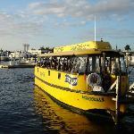 Wassertaxi Ft Lauderdale, Startpunkt 5, FloridaJournal.de >> Ft. Lauderdale