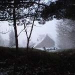 House from the woods, winter's morning