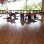 bamboo flying yog class
