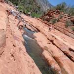 Natural water shoot
