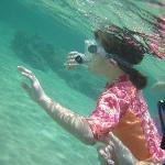 fun for beginners and seasoned snorkelers