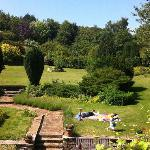 View from our room/sunbathing in the garden