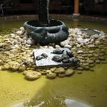 A little pond in reception