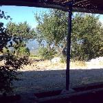 Blick vom Restraurant auf Stari Grad und Jelsa