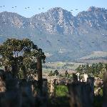 surroundings of Stellenbosch