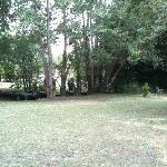 le petit parc et la Venise verte