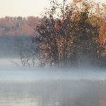 Morning fog on the lake property