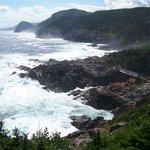 East Coast Trail - Sugar Loaf Path