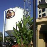 Foto di Steelhead Brewery