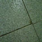 Tiles with dirty grout