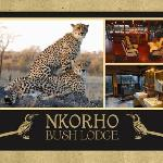 Nkorho Bush Lodge at it's best !!!