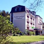 Photo of Hotel Vogtland