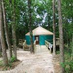 """Yurt for """"glamping"""""""