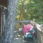 Our Deck on the Treetop