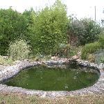 la piscina naturale