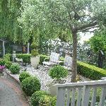 collinsons garden