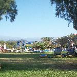 Pool/garden area