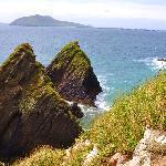 sheashead coast