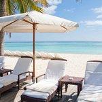 palm beach 5/11