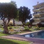 Hotel pool & gardens