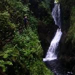 one of the waterfalls on the waterfall trail at glenariff