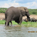 African Adventure Travellers Day Tours