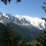 le massif du Mont Blanc vu du parc des aiguilles Rouges
