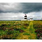 hook lighthouse in July