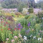 Part of the Victorian Walled Garden