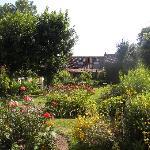 vue d'ensemble du jardin