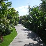 The main path along which the villas are laid out