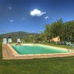 giardino,piscina