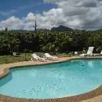 Another view of the pool/mtns from the lanai.