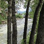 river behind restaurant