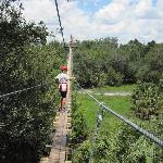 Creaky Plank Foot Bridge