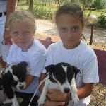 bambine in attesa della lezione di equitazione