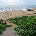 Strand vor Bethsaida Hermitage