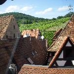 View from back windows across roof to vineyards