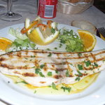 Pesce spada ~ Swordfish