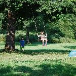 Swinging in the meadow in front of our cottage
