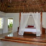 Purrrrfect King Bed (Palm Villa)