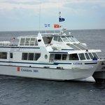 Le catamaran de croisières