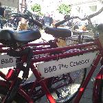 The Collector B&B bicycles on a refreshment stop