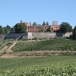 Provided by: Castello di Brolio